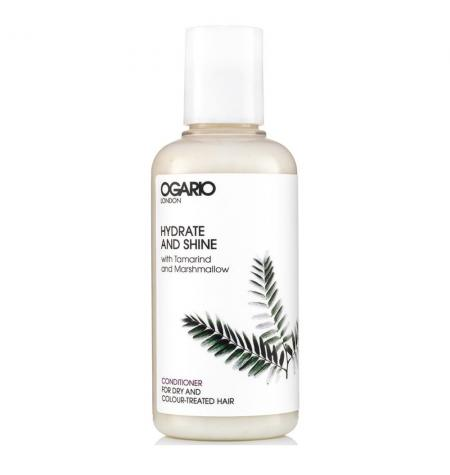 Hydrate & Shine Conditioner · 100 ml