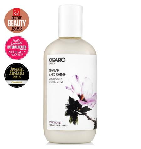 Revive & Shine Conditioner · 250 ml