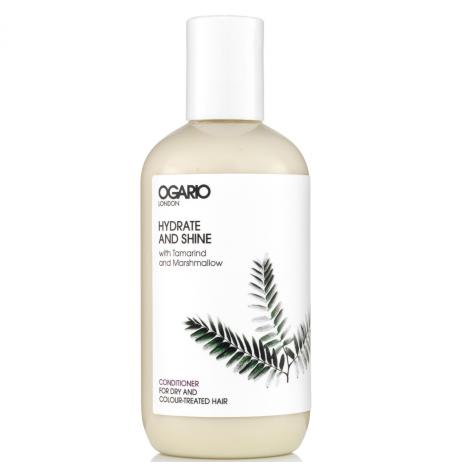 Hydrate & Shine Acondicionador · 250 ml